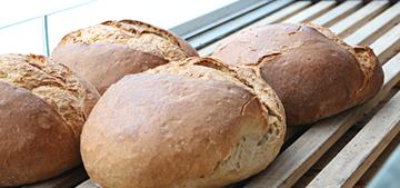 Akbak Tesisleri Ak Mek Ekmek Fırını